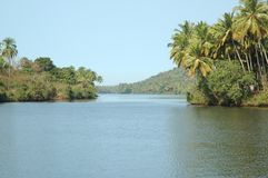 热带的地点 免版税库存照片