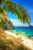 热带的场面 库存照片