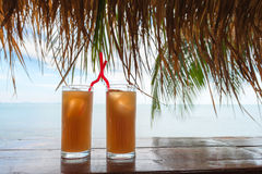 热带的夏天刷新鸡尾酒饮料 图库摄影