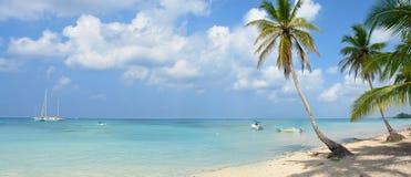 热带的天堂 库存照片