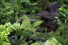 热带的小屋 免版税库存图片