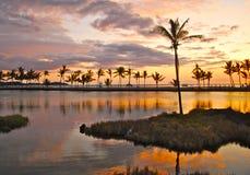 热带的小海湾 库存照片