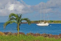 热带的小海湾 免版税库存图片