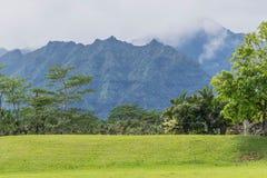 热带的山脉 图库摄影