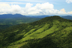 热带的山 库存照片