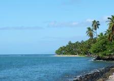 热带的岸 图库摄影