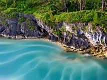 热带的岸 库存图片