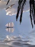 热带的岸 免版税库存照片