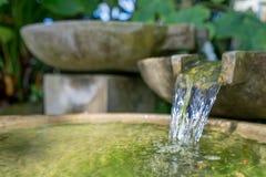 热带的庭院 有水流动的石碗 库存图片