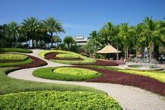 热带的庭院 库存图片