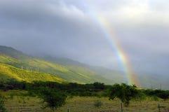 热带的彩虹 免版税库存照片