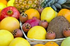 热带的新鲜水果 库存图片