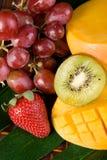 热带的新鲜水果 图库摄影