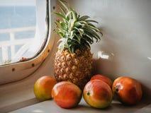 热带的新鲜水果 免版税库存照片