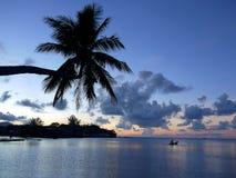 热带的日落 库存照片