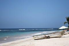 热带的时间 图库摄影