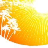 热带的星期日 向量例证