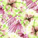 热带的模式 水彩异乎寻常的花和monstera叶子 库存例证