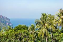 热带的横向 发埃发埃海岛 免版税图库摄影
