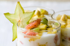 热带的水果沙拉 库存图片