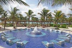 热带的池 图库摄影