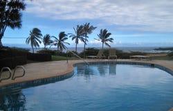 热带的池 库存图片