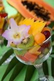 热带的沙拉 库存照片