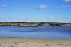 热带的沼泽 免版税库存照片