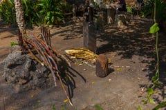 热带的海岛 行程 图库摄影