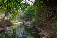 热带的海岛 行程 库存照片