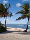 热带的海滩睡椅 免版税图库摄影