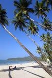 热带的海滩 免版税库存照片