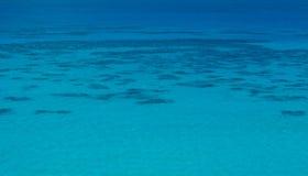 热带的海运 免版税库存照片