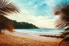 热带的海滩 葡萄酒作用 库存照片