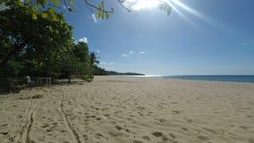 热带的海滩 股票视频