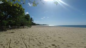 热带的海滩 股票录像