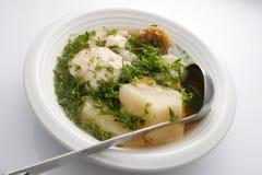 热带的炖煮的食物 免版税库存照片