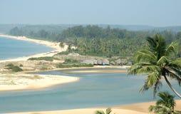 热带的照片 免版税图库摄影