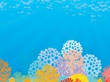 热带的珊瑚礁 皇族释放例证