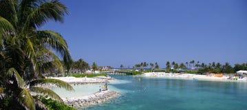 热带的盐水湖 免版税库存照片