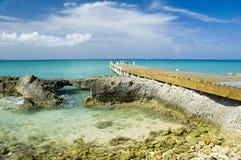 热带的码头 库存照片