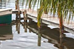 热带的码头 库存图片