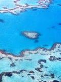 热带的礁石 库存图片