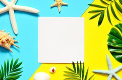 热带的背景 棕榈树分支与海星和贝壳在黄色和蓝色背景 旅行 复制空间 免版税库存图片