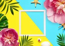 热带的背景 棕榈树分支与海星和贝壳在黄色和蓝色背景 旅行 复制空间 免版税库存照片