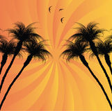 热带的背景 免版税库存照片