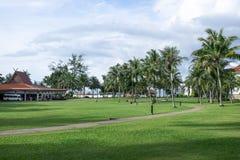 热带的草坪 免版税库存照片
