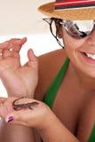 热带的蜥蜴 库存图片