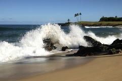 热带的飞溅 免版税库存图片