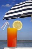 热带的饮料 库存照片
